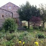 'Dorothy's garden'